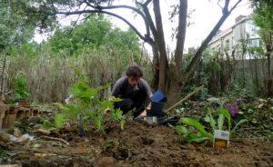 jardiniersavelojardinageparisiledefranceyvelinespaysagisteterrassejardin