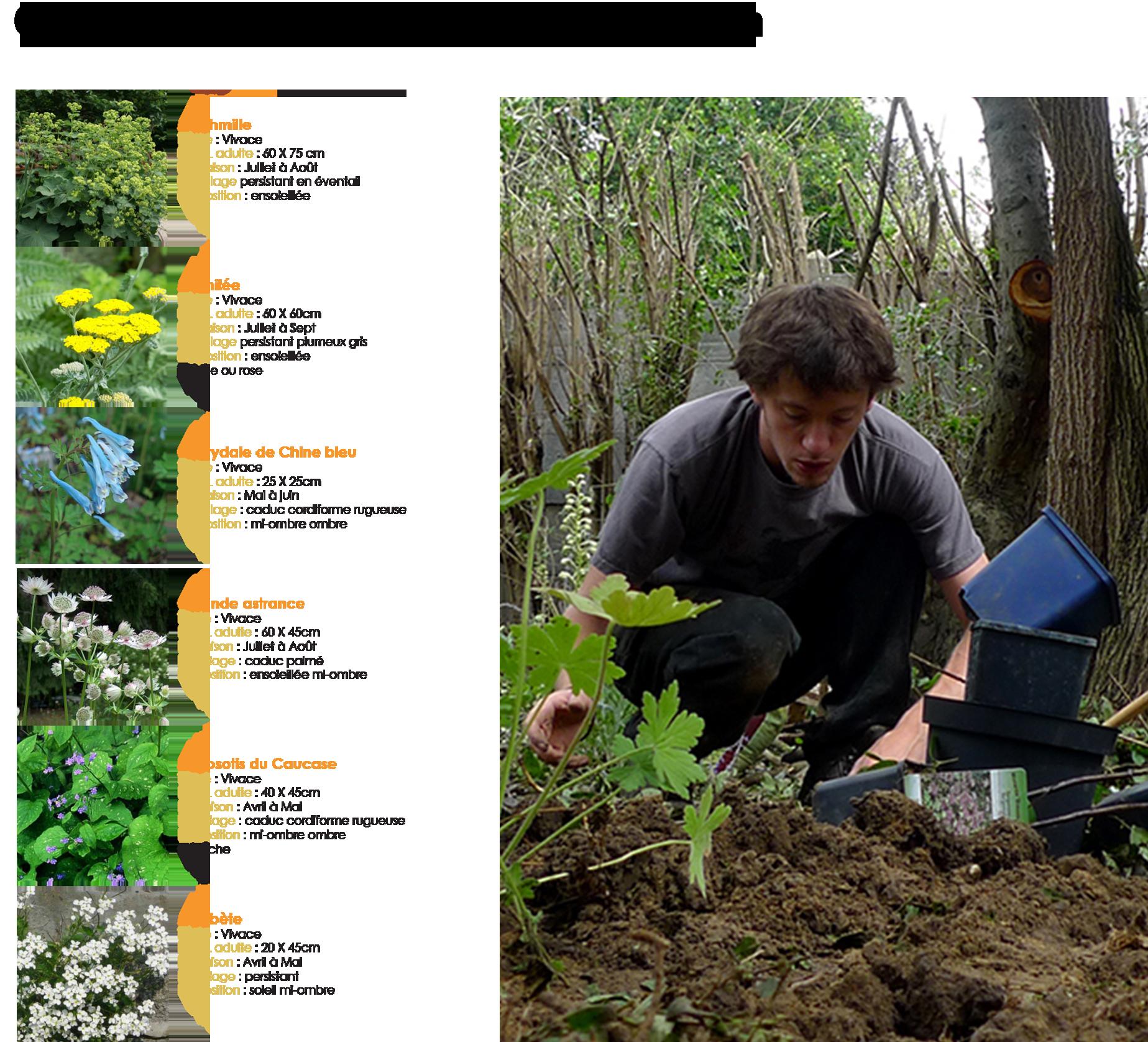 Devis travaux paysagers les jardiniers v lo for Cout entretien jardin