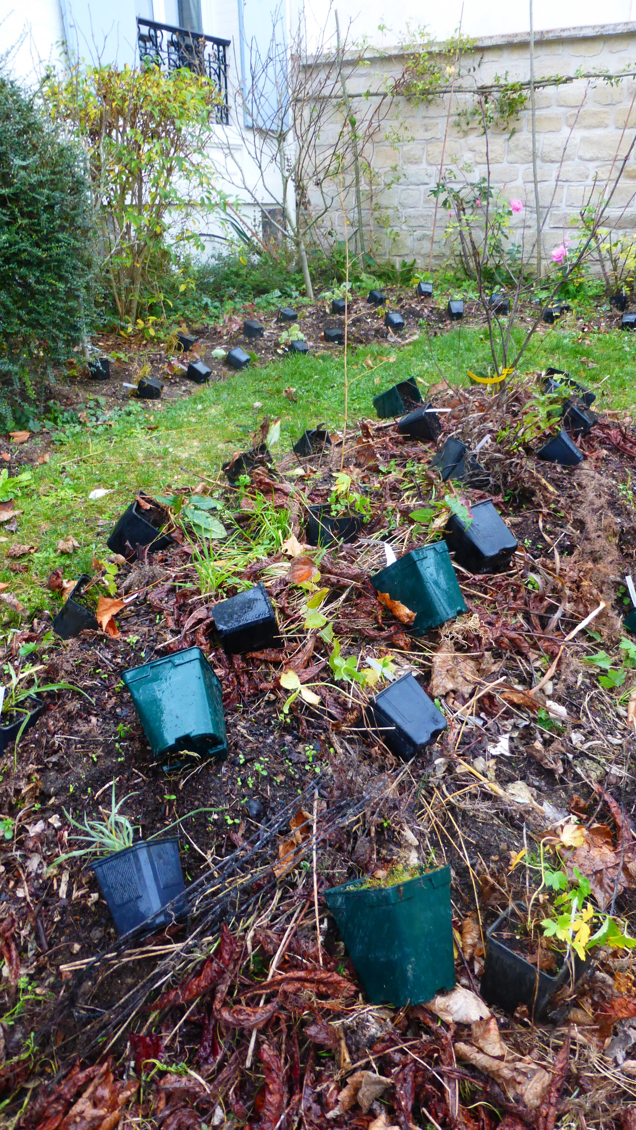 78 jardin z ro carbone les jardiniers v lo for Entretien jardin ile de re