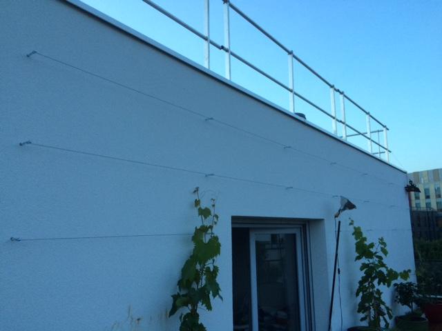 les jardiniers à vélo paris ile de france aménagement entretien terrasse jardin villejuif vigne fil metalique