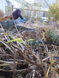 les-jardiniers-a-velo-entretien-paillage-jardin-paris-paysagiste-terrasse-1bd