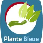 Plante bleue